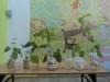 botanicy