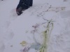 18.-Zimowy-ogród