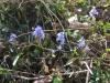 rajd-pierwszy-dzien-wiosny-4